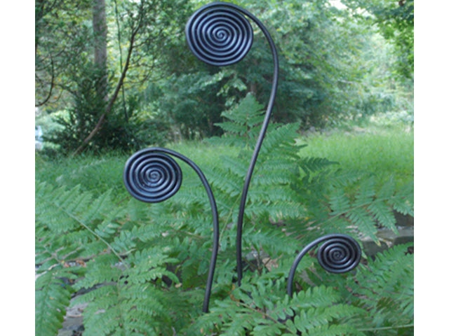 Fiddlehead Fern Stakes